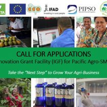 CALL FOR APPLICATIONS : Innovation Grant Facility (IGF) for Agro SME's